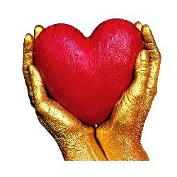 cardioactive opinie forum komentarze